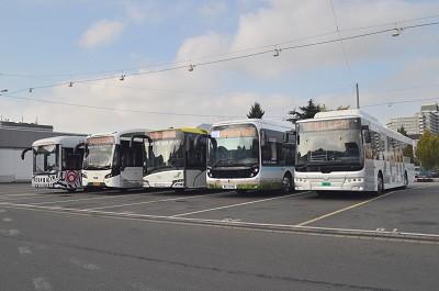 De gauche � droite, les bus �lectriques Sileo, VDL, Solaris, Bollor� et Ebusco (photo FG)