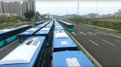 Ci-dessus, des bus électriques BYD qui ont rejoint le parc impressionnant de véhicules zéro émission de Shenzhen.